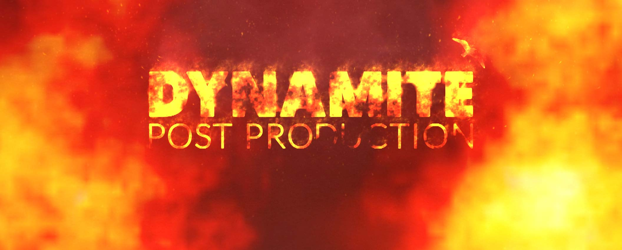 Dynamite Pictures website