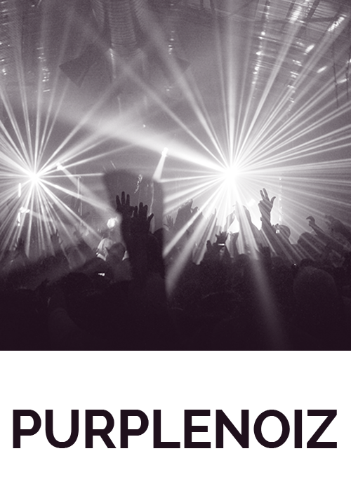 Purplenoiz website